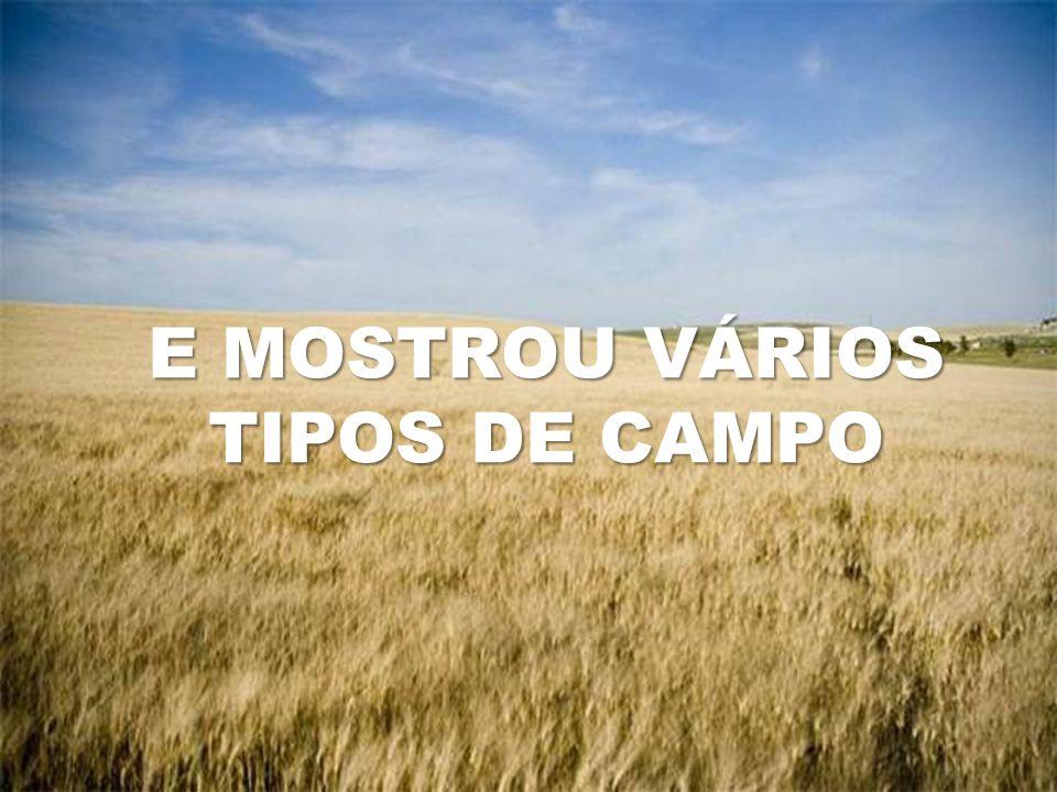 E MOSTROU VÁRIOS TIPOS DE CAMPO