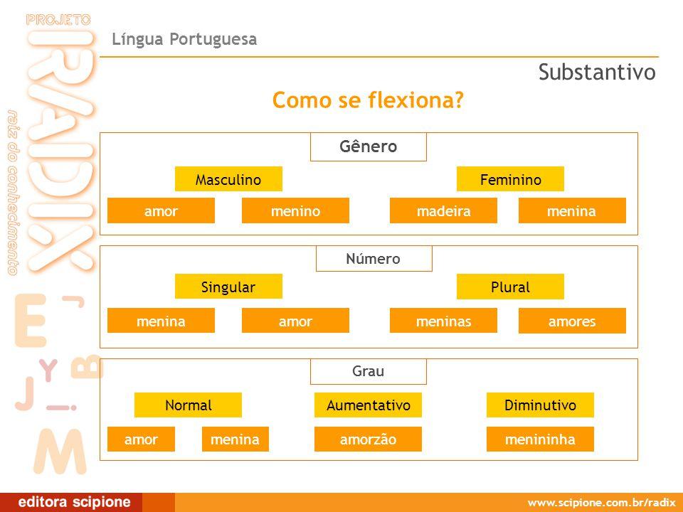 Língua Portuguesa www.scipione.com.br/radix Gênero Como se flexiona.