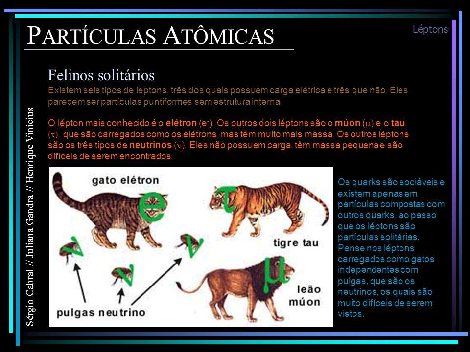 P ARTÍCULAS A TÔMICAS Felinos solitários Sérgio Cabral // Juliana Gandra // Henrique Vinícius Léptons Existem seis tipos de léptons, três dos quais possuem carga elétrica e três que não.