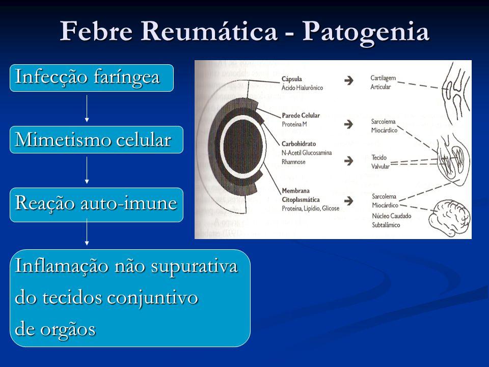 Infecção faríngea Mimetismo celular Reação auto-imune Inflamação não supurativa do tecidos conjuntivo de orgãos Febre Reumática - Patogenia