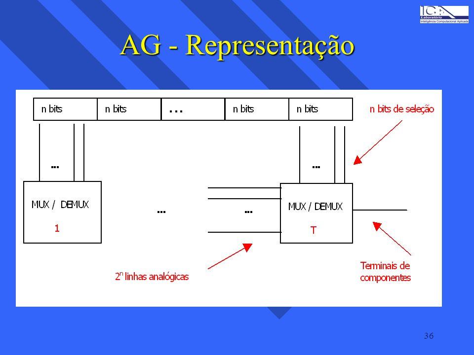 36 AG - Representação