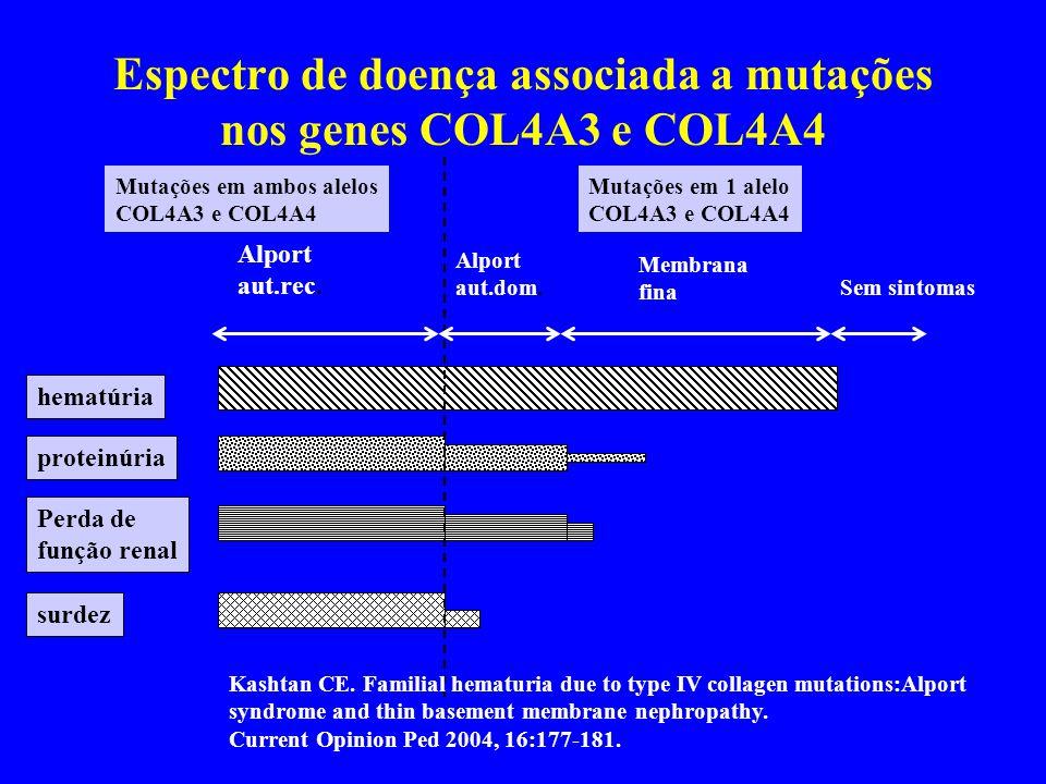 Espectro de doença associada a mutações nos genes COL4A3 e COL4A4 hematúria proteinúria Perda de função renal surdez Alport aut.rec.