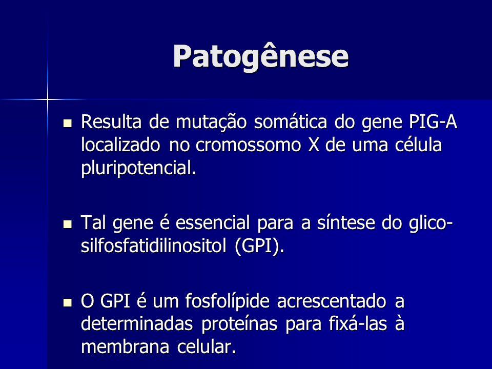 Patogênese Resulta de mutação somática do gene PIG-A localizado no cromossomo X de uma célula pluripotencial. Resulta de mutação somática do gene PIG-