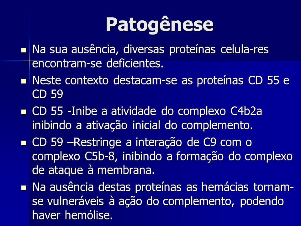 Patogênese Na sua ausência, diversas proteínas celula-res encontram-se deficientes.
