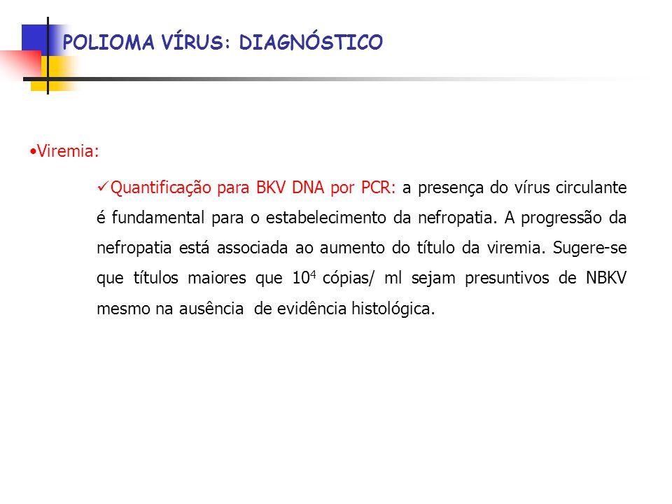 POLIOMA VÍRUS: DIAGNÓSTICO Viremia: Quantificação para BKV DNA por PCR: a presença do vírus circulante é fundamental para o estabelecimento da nefropatia.