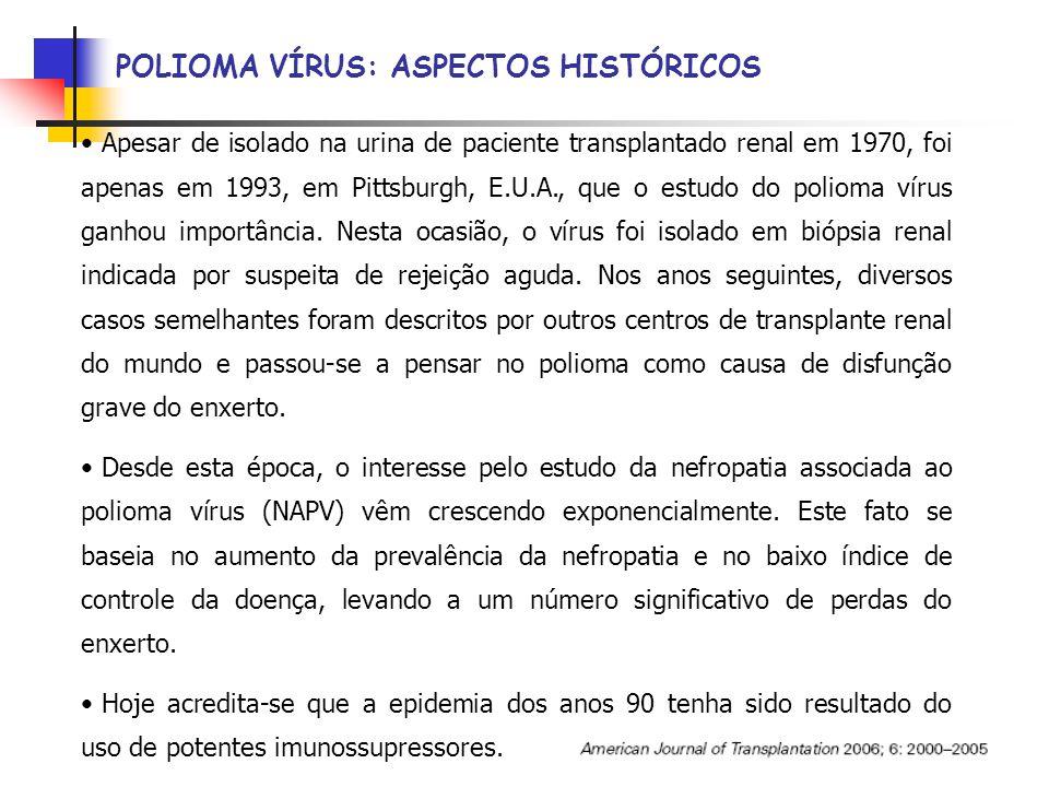 POLIOMA VÍRUS: ASPECTOS HISTÓRICOS Apesar de isolado na urina de paciente transplantado renal em 1970, foi apenas em 1993, em Pittsburgh, E.U.A., que o estudo do polioma vírus ganhou importância.