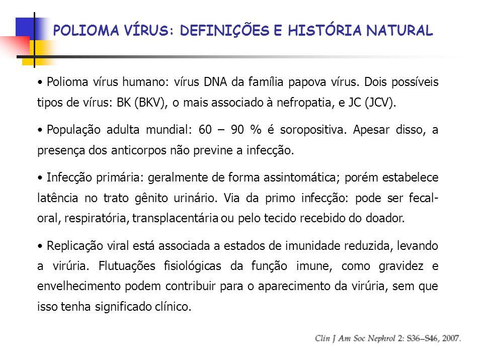 POLIOMA VÍRUS: DEFINIÇÕES E HISTÓRIA NATURAL Polioma vírus humano: vírus DNA da família papova vírus.
