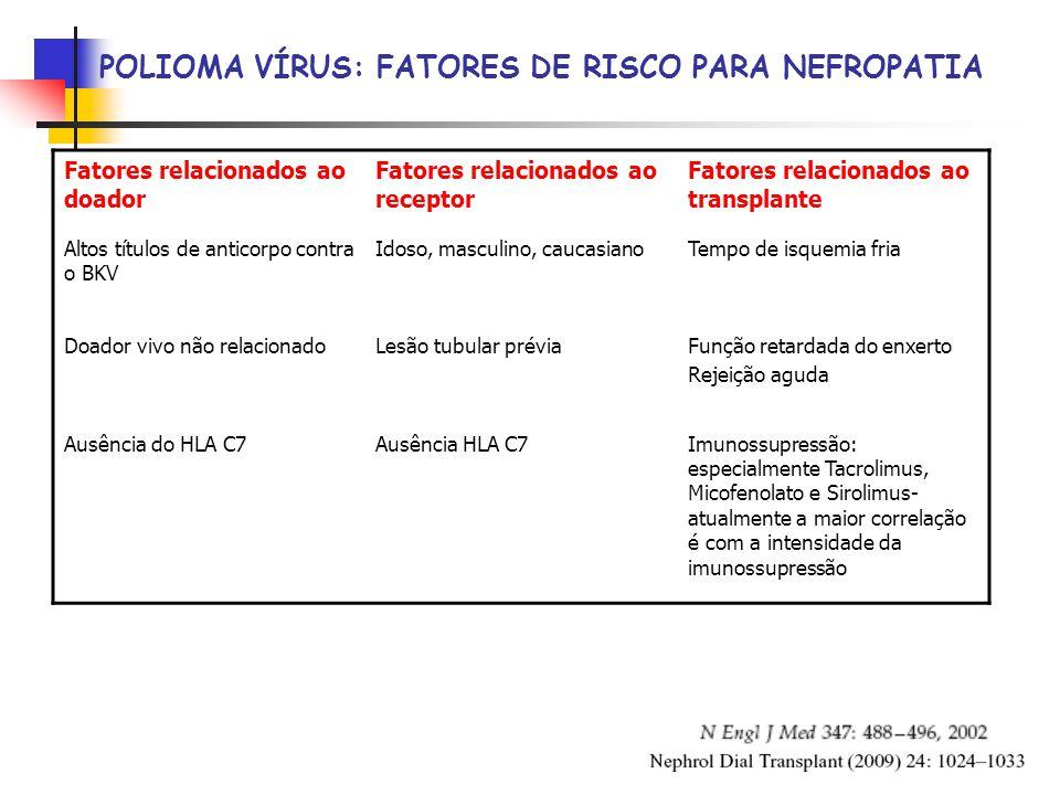 POLIOMA VÍRUS: FATORES DE RISCO PARA NEFROPATIA Fatores relacionados ao doador Fatores relacionados ao receptor Fatores relacionados ao transplante Altos títulos de anticorpo contra o BKV Idoso, masculino, caucasianoTempo de isquemia fria Doador vivo não relacionadoLesão tubular préviaFunção retardada do enxerto Rejeição aguda Ausência do HLA C7Ausência HLA C7Imunossupressão: especialmente Tacrolimus, Micofenolato e Sirolimus- atualmente a maior correlação é com a intensidade da imunossupressão