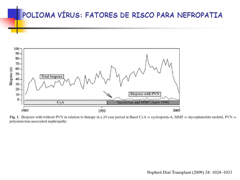 POLIOMA VÍRUS: FATORES DE RISCO PARA NEFROPATIA