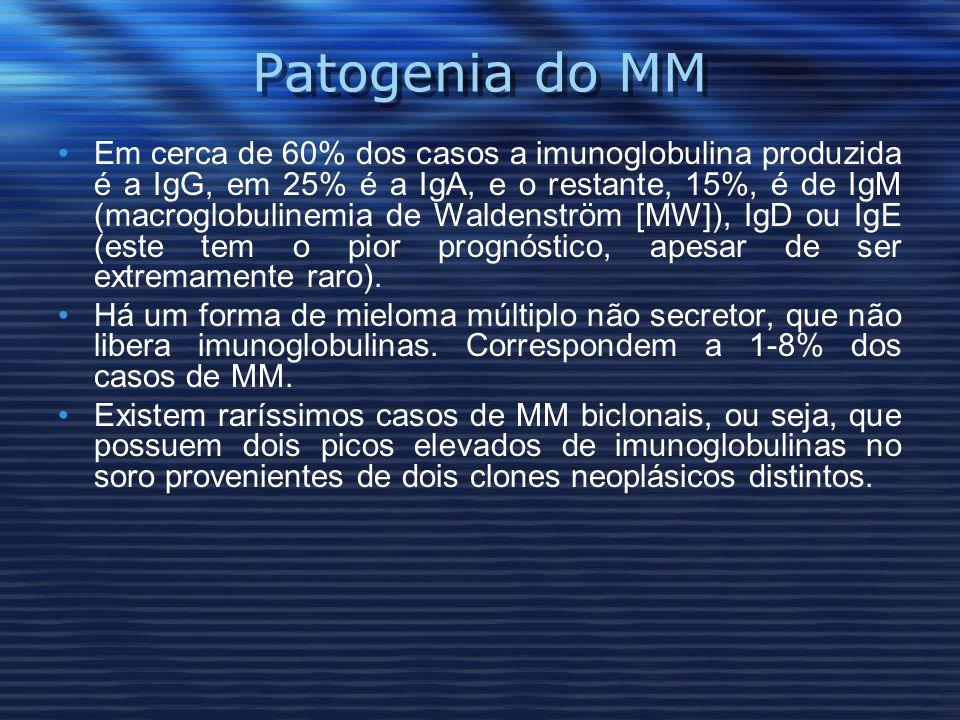 Patogenia do MM Em cerca de 60% dos casos a imunoglobulina produzida é a IgG, em 25% é a IgA, e o restante, 15%, é de IgM (macroglobulinemia de Waldenström [MW]), IgD ou IgE (este tem o pior prognóstico, apesar de ser extremamente raro).