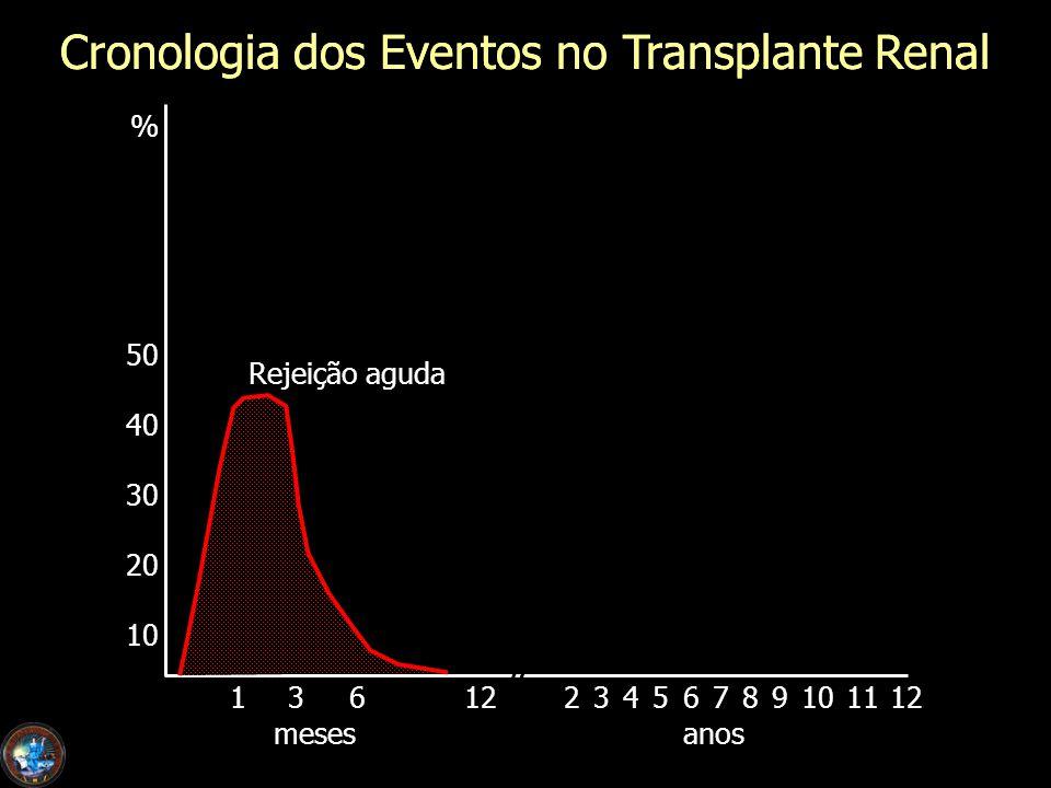 Cronologia dos Eventos no Transplante Renal % 50 40 30 20 10 1361223456789101112 mesesanos Cronologia dos Eventos no Transplante Renal Rejeição aguda
