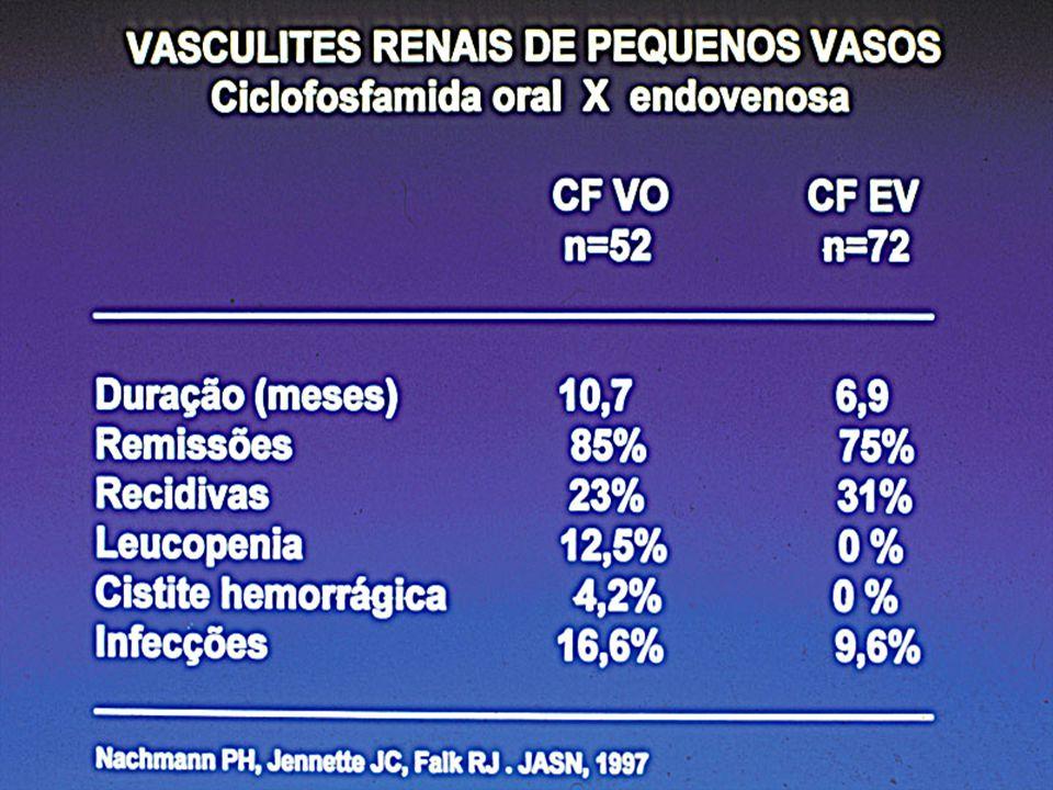 VASCULITES PAUCI-IMUNES Casuística Nefrologia HCFMUSP Fatores prognósticos Remissão IRC/Óbito n=12 n=13 Idade 45±17 54±16 Tempo de diagn 17±10 28±11 Cr inicial 2,5±1,6 4,1±2,0 Uprot inicial 2,1±1,5 2,2±1,7 Diálise 33 % 66 % % de crescentes 25±10 65±12