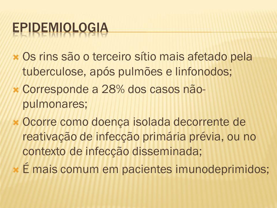  A sensibilidade de pesquisa urinária para BAAR é de 80% a 90%;  Alterações radiológicas:  Estão presentes na maioria dos casos, mesmo nas formas iniciais;  Em formas iniciais, pode ser encontrada na urografia excretora alteração isolada em um único cálice renal associada a pontos de necrose no parênquima renal e calcificações no Rx simples de abdome;  Em formas mais avançadas encontram-se distorção caliceal, estreitamentos ureterais e fibrose vesical;  Em doença mais avançada pode ocorrer a exclusão renal.