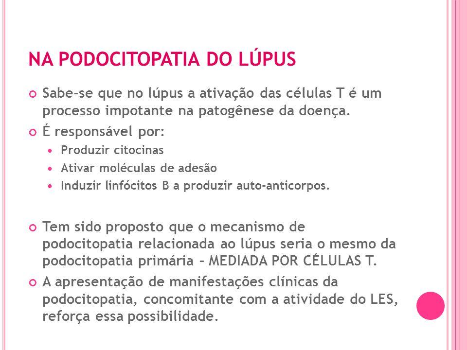 Podocitopatias. Mecanismos Reiser, JCI, 2004