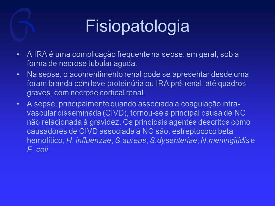 Fisiopatologia Vários fatores têm sido implicados na fisiopatologia da IRA da sepse: endotoxinas, choque, drogas vasoativas e nefrotóxicas, além de mediadores inflamatórios.