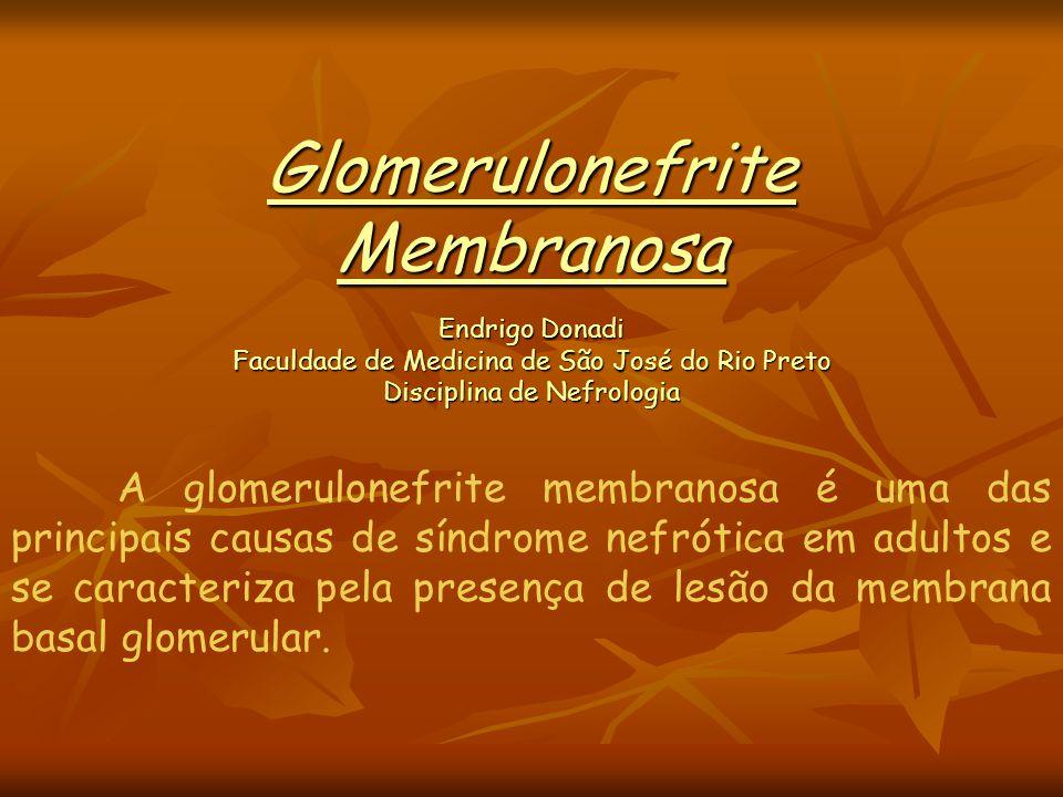 A glomerulonefrite membranosa é uma das principais causas de síndrome nefrótica em adultos e se caracteriza pela presença de lesão da membrana basal g
