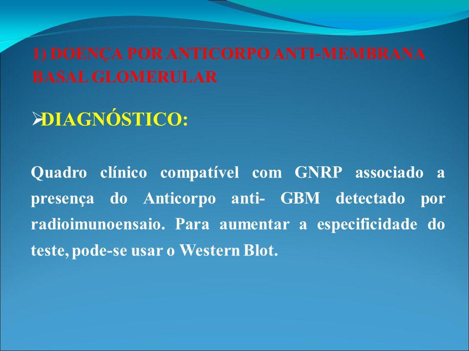 1) DOENÇA POR ANTICORPO ANTI-MEMBRANA BASAL GLOMERULAR  EPIDEMIOLOGIA