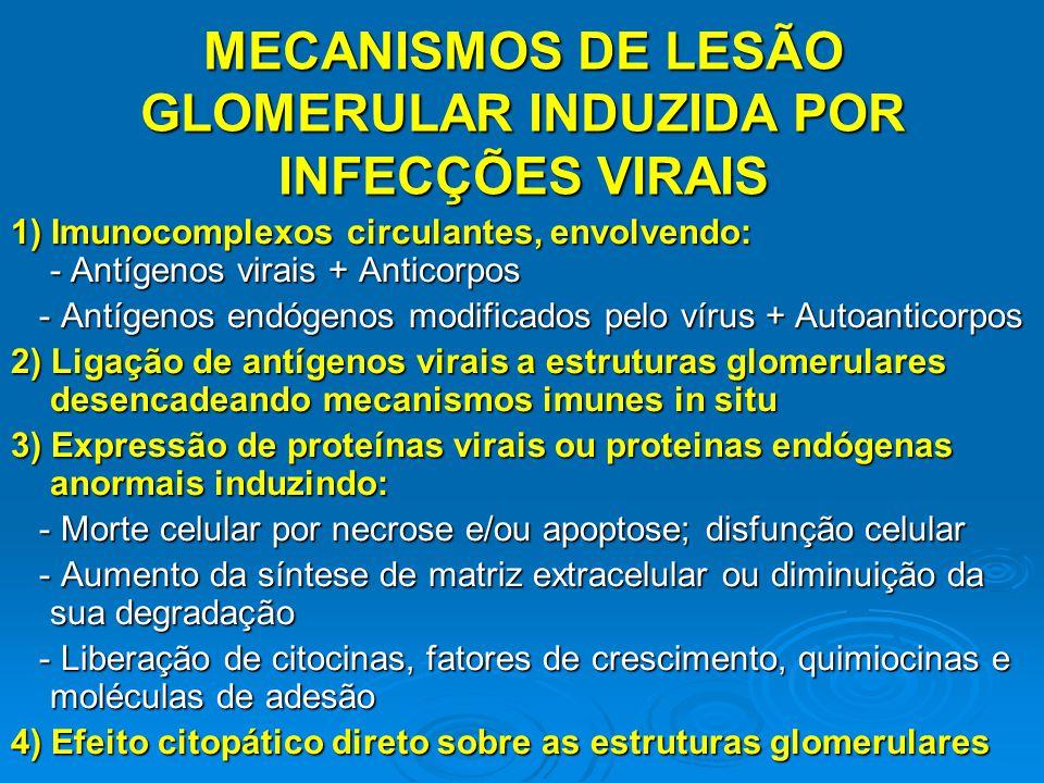 1) Imunocomplexos circulantes, envolvendo: - Antígenos virais + Anticorpos - Antígenos endógenos modificados pelo vírus + Autoanticorpos - Antígenos e