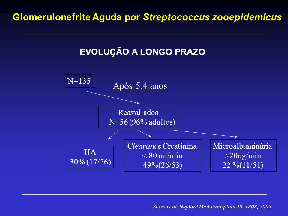 Glomerulonefrite Aguda por Streptococcus zooepidemicus EVOLUÇÃO A LONGO PRAZO N=135 Reavaliados N=56 (96% adultos) HA 30% (17/56) Clearance Creatinina < 80 ml/min 49%(26/53) Microalbuminúria >20ug/min 22 %(11/51) Após 5,4 anos Sesso et al.