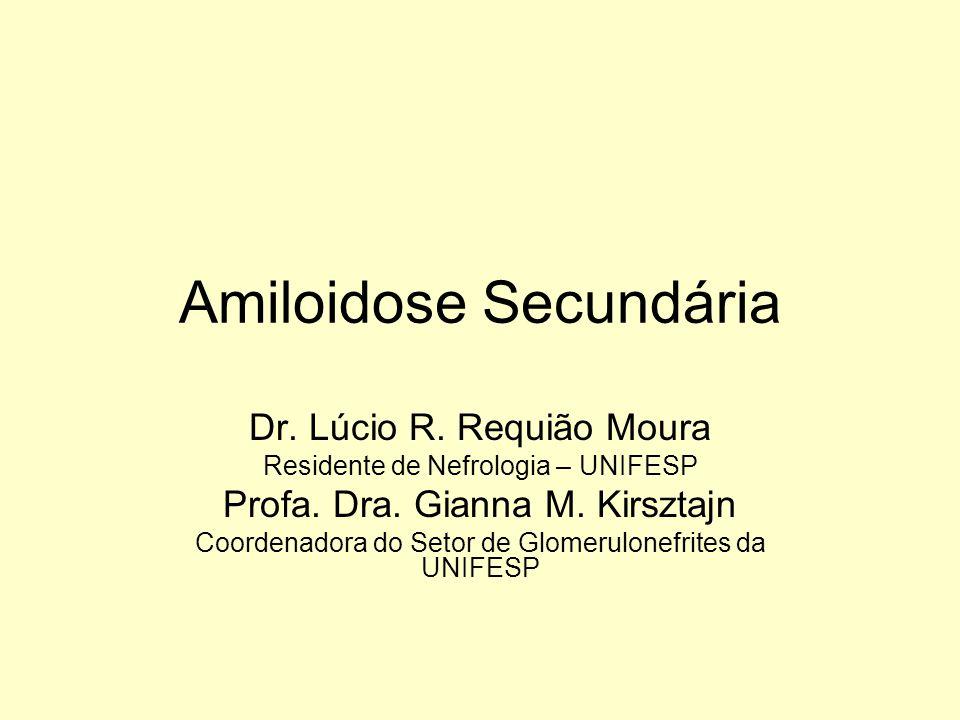 Amiloidose Secundária Dr. Lúcio R. Requião Moura Residente de Nefrologia – UNIFESP Profa. Dra. Gianna M. Kirsztajn Coordenadora do Setor de Glomerulon