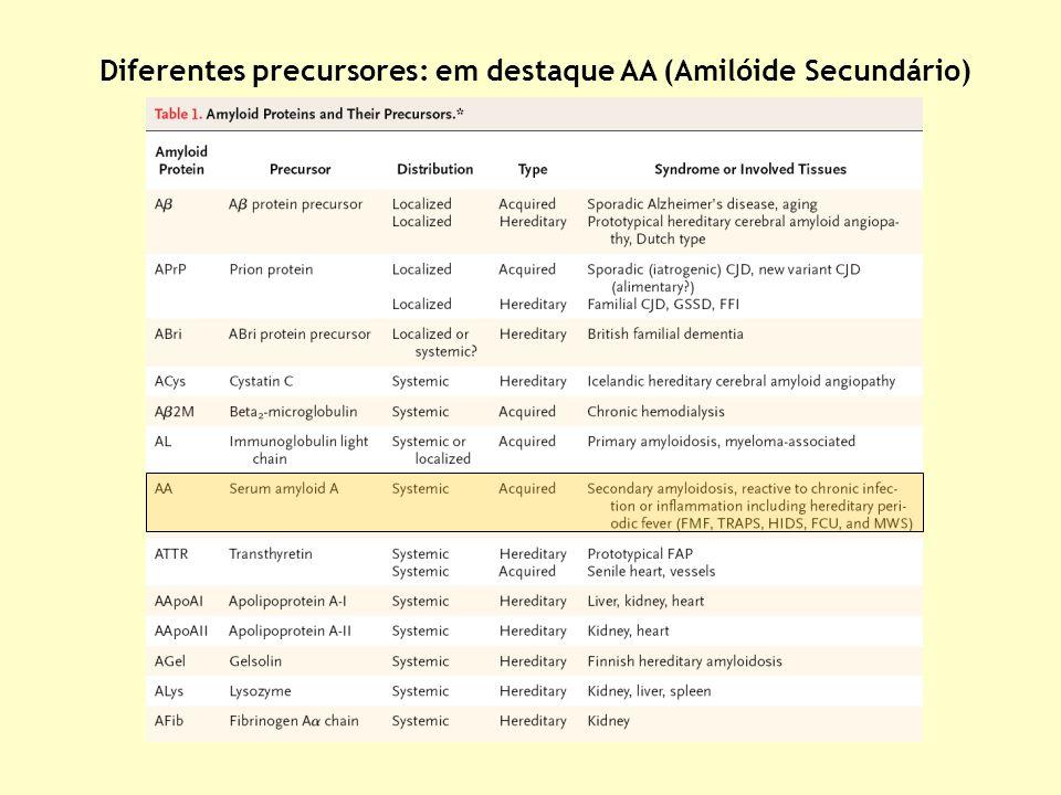 Diferentes precursores: em destaque AA (Amilóide Secundário)