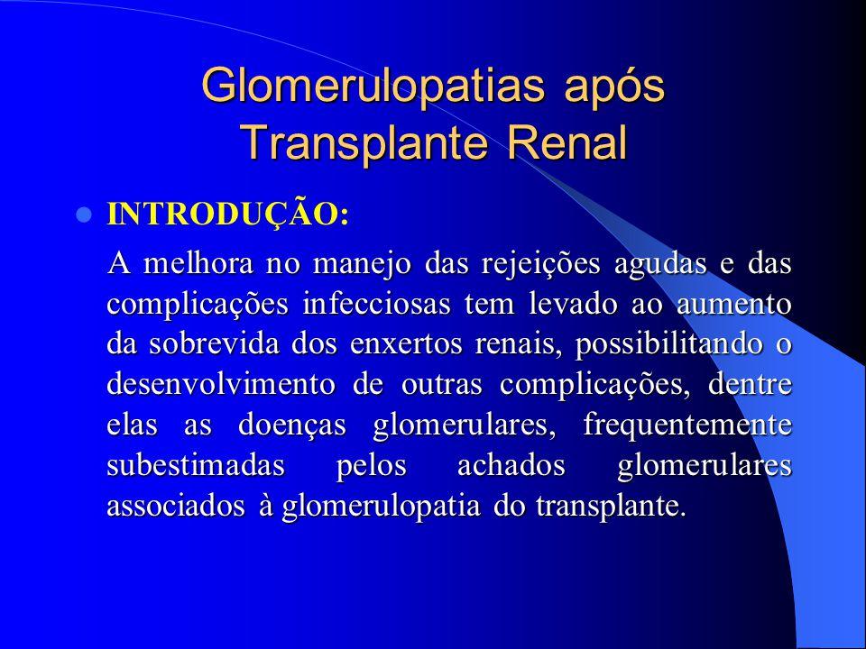 Glomerulopatias Primárias após Transplante Renal Principais Glomerulopatias: Principais Glomerulopatias: I-Nefropatia por IgA (NIgA) I-Nefropatia por IgA (NIgA) II-Glomeruloesclerose Segmentar e Focal II-Glomeruloesclerose Segmentar e Focal III-Glomerulonefrite Crescêntica III-Glomerulonefrite Crescêntica IV-GN Membranoproliferativa (GNMP) IV-GN Membranoproliferativa (GNMP) V-GN Membranosa (GNM) V-GN Membranosa (GNM) VI-GN Fibrilar (GNF) VI-GN Fibrilar (GNF) VII-Glomerulopatia do Transplante (GPTx) VII-Glomerulopatia do Transplante (GPTx)
