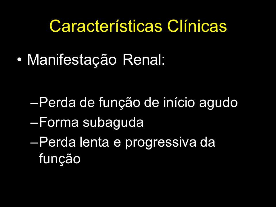 Características Clínicas Exames Laboratorias: –Urina I : Exame benigno –Eosinofilia e eosinofilúria –Hipocomplementenemia