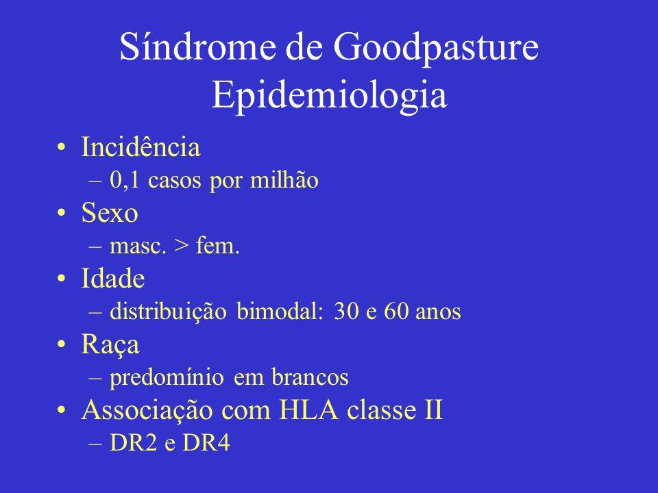 Síndrome de Goodpasture Epidemiologia Incidência –0,1 casos por milhão Sexo –masc. > fem. Idade –distribuição bimodal: 30 e 60 anos Raça –predomínio e