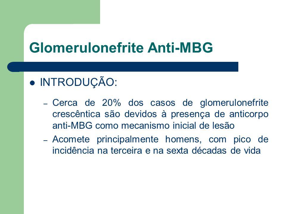 Glomerulonefrite Anti-MBG INTRODUÇÃO: – Cerca de 20% dos casos de glomerulonefrite crescêntica são devidos à presença de anticorpo anti-MBG como mecan