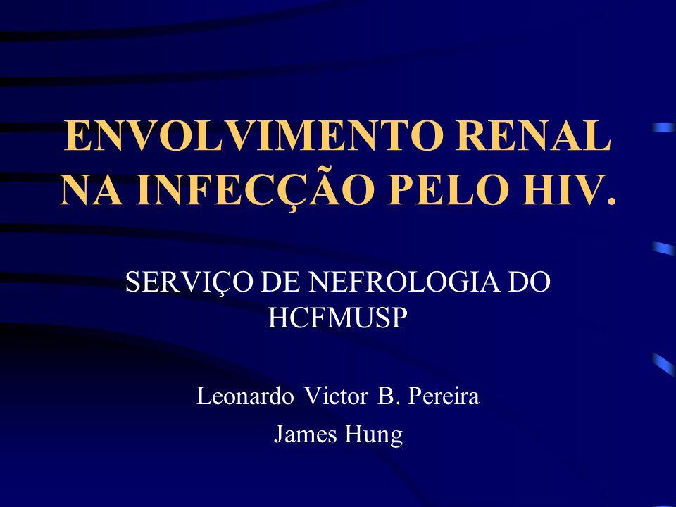 ENVOLVIMENTO RENAL NA INFECÇÃO PELO HIV. SERVIÇO DE NEFROLOGIA DO HCFMUSP Leonardo Victor B. Pereira James Hung