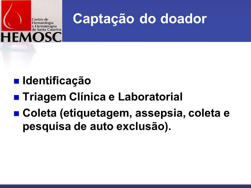 Captação do doador Identificação Triagem Clínica e Laboratorial Coleta (etiquetagem, assepsia, coleta e pesquisa de auto exclusão).