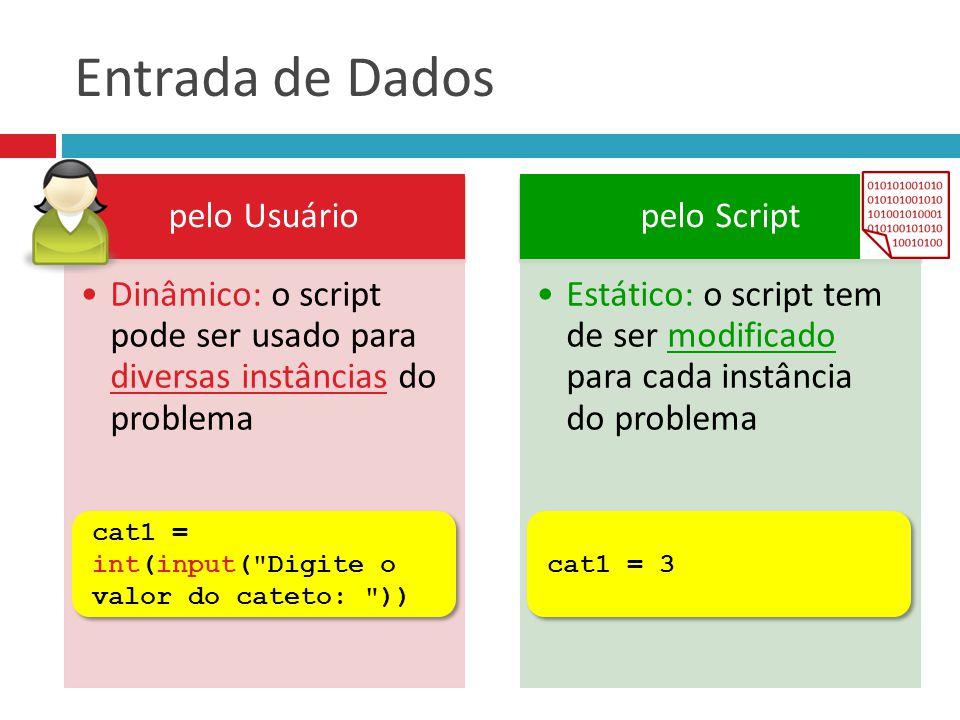 Entrada de Dados pelo Usuário Dinâmico: o script pode ser usado para diversas instâncias do problema pelo Script Estático: o script tem de ser modific