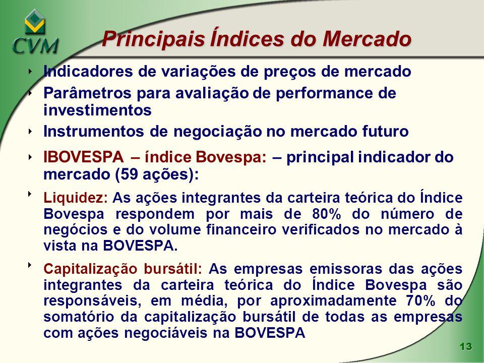 13 Principais Índices do Mercado  Indicadores de variações de preços de mercado  Parâmetros para avaliação de performance de investimentos  Instrum