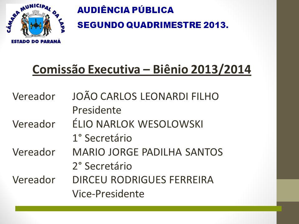 AUDIÊNCIA PÚBLICA SEGUNDO QUADRIMESTRE 2013. Comissão Executiva – Biênio 2013/2014 Vereador JOÃO CARLOS LEONARDI FILHO Presidente Vereador ÉLIO NARLOK