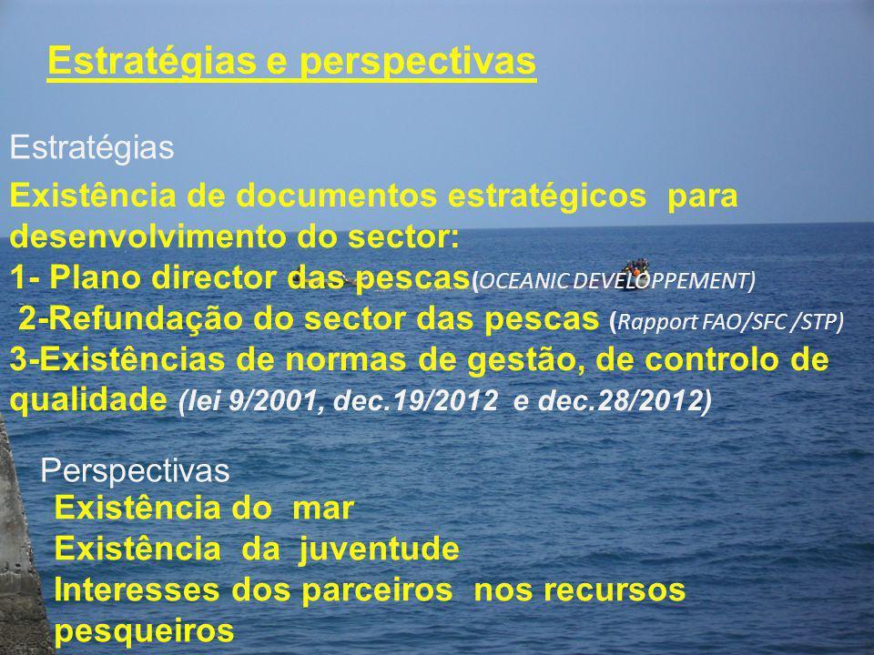 Estratégias e perspectivas Existência de documentos estratégicos para desenvolvimento do sector: 1- Plano director das pescas (OCEANIC DEVELOPPEMENT)