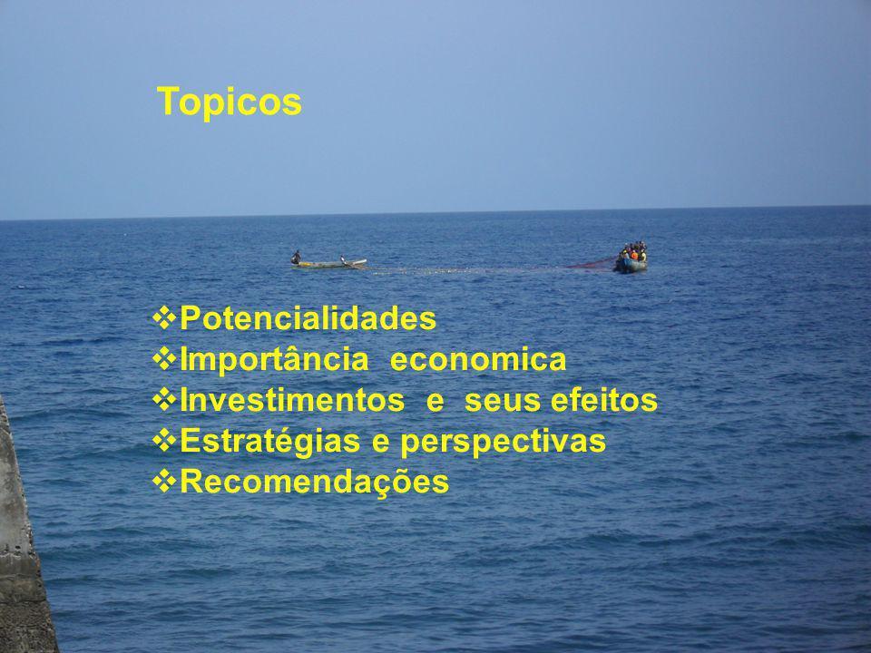 Topicos  Potencialidades  Importância economica  Investimentos e seus efeitos  Estratégias e perspectivas  Recomendações