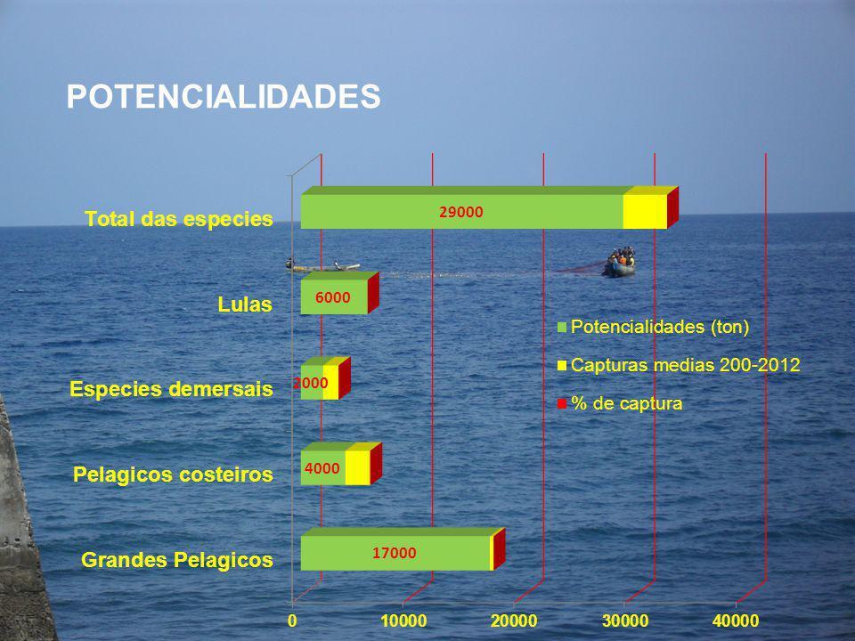 POTENCIALIDADES (algumas especies) Agulha sombra Xiphias gladius Atum judeo Ka tsuwonus pelamis (Istiophorus albicans 17.000 toneladas/ano 2.000 toneladas/ano