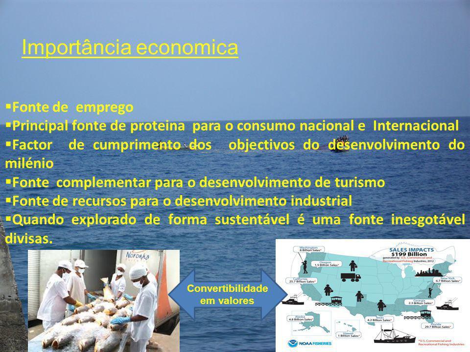 Importância economica  Fonte de emprego  Principal fonte de proteina para o consumo nacional e Internacional  Factor de cumprimento dos objectivos