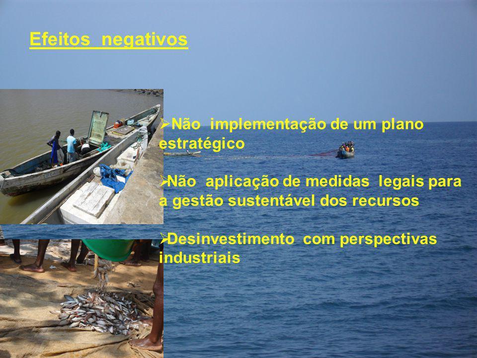 Efeitos negativos  Não implementação de um plano estratégico  Não aplicação de medidas legais para a gestão sustentável dos recursos  Desinvestimen