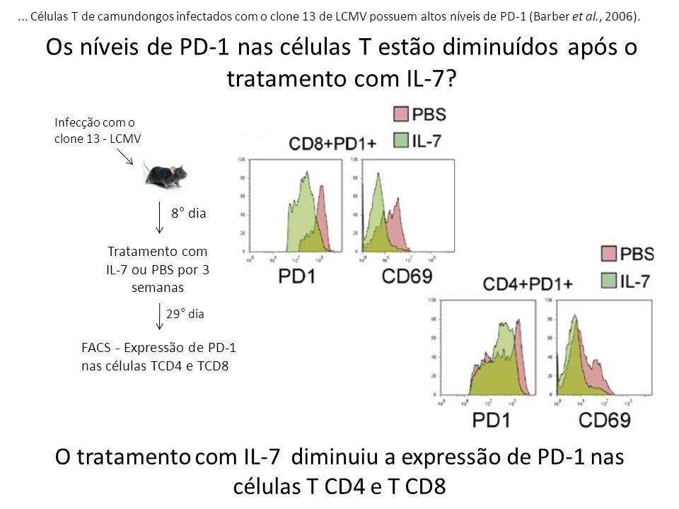 ... Células T de camundongos infectados com o clone 13 de LCMV possuem altos níveis de PD-1 (Barber et al., 2006). Os níveis de PD-1 nas células T est
