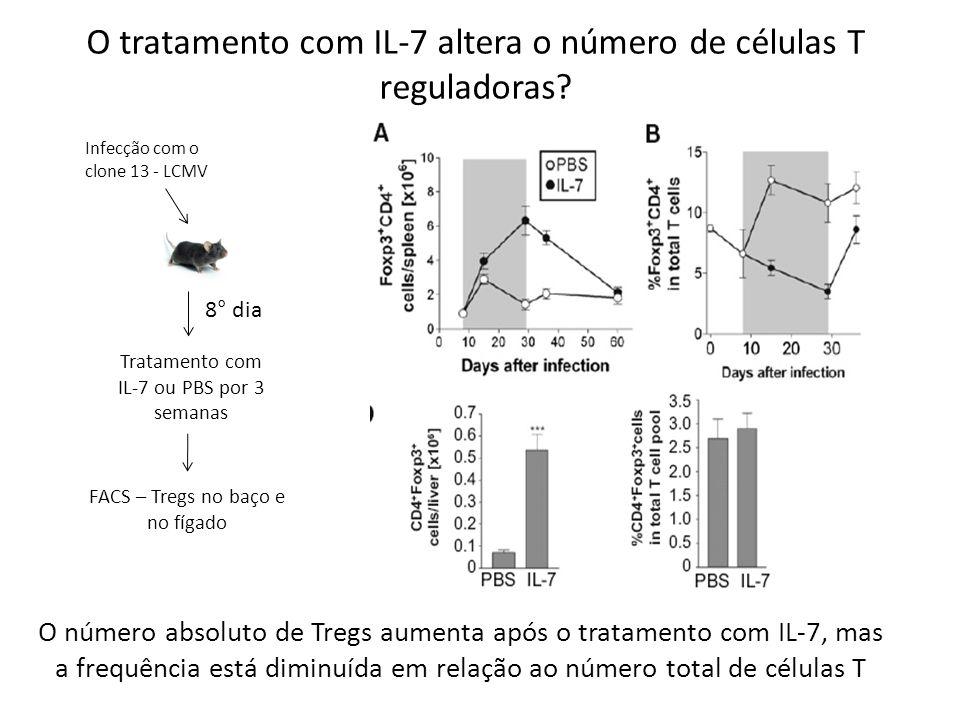 Infecção com o clone 13 - LCMV 8° dia Tratamento com IL-7 ou PBS por 3 semanas FACS – Tregs no baço e no fígado O tratamento com IL-7 altera o número