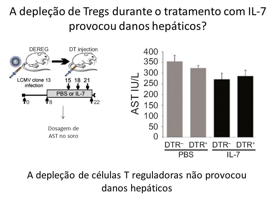A depleção de Tregs durante o tratamento com IL-7 provocou danos hepáticos? Dosagem de AST no soro A depleção de células T reguladoras não provocou da