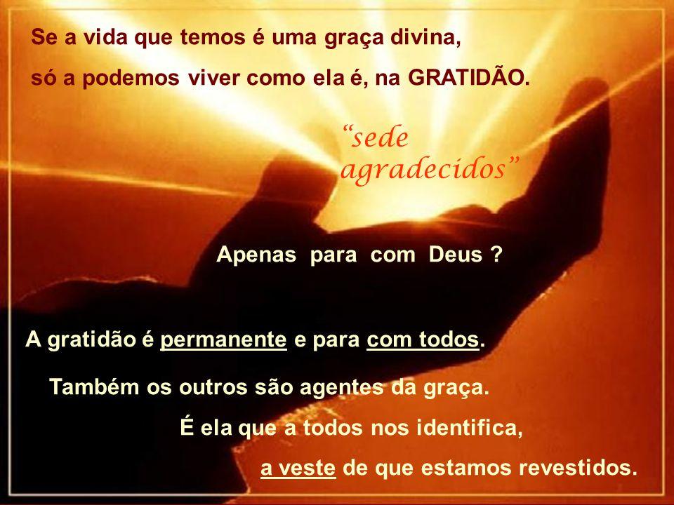 """Se a vida que temos é uma graça divina, só a podemos viver como ela é, na GRATIDÃO. """"sede agradecidos"""" Apenas para com Deus ? A gratidão é permanente"""