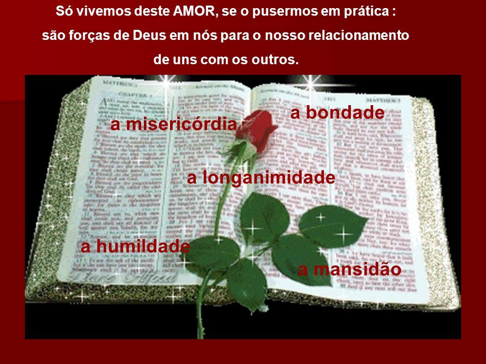 Só vivemos deste AMOR, se o pusermos em prática : são forças de Deus em nós para o nosso relacionamento de uns com os outros. a misericórdia a bondade