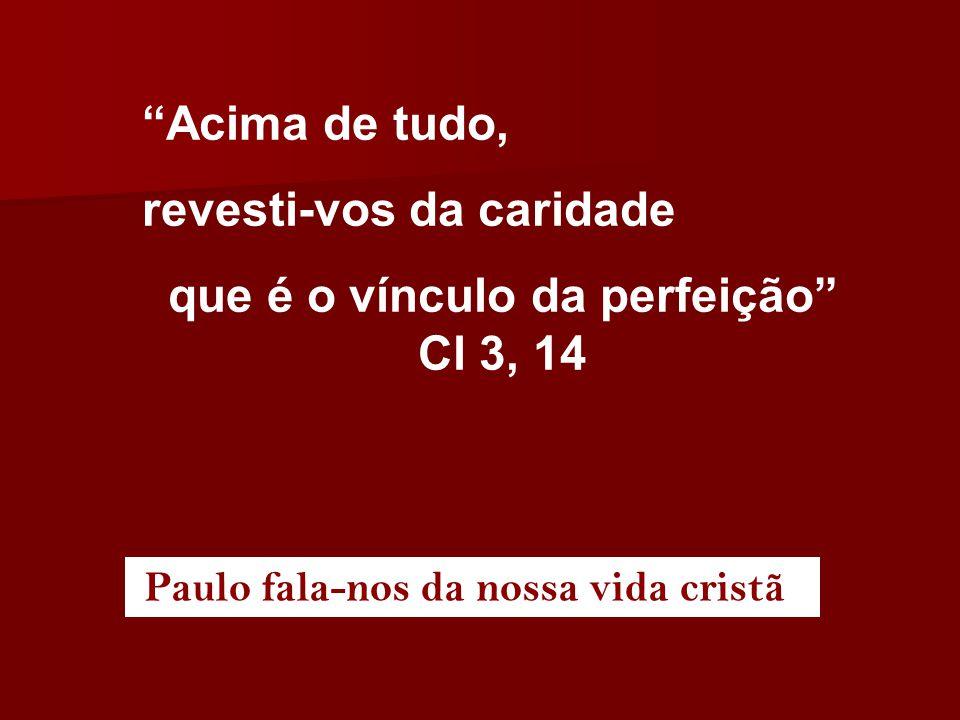 """""""Acima de tudo, revesti-vos da caridade que é o vínculo da perfeição"""" Cl 3, 14 Paulo fala-nos da nossa vida cristã"""