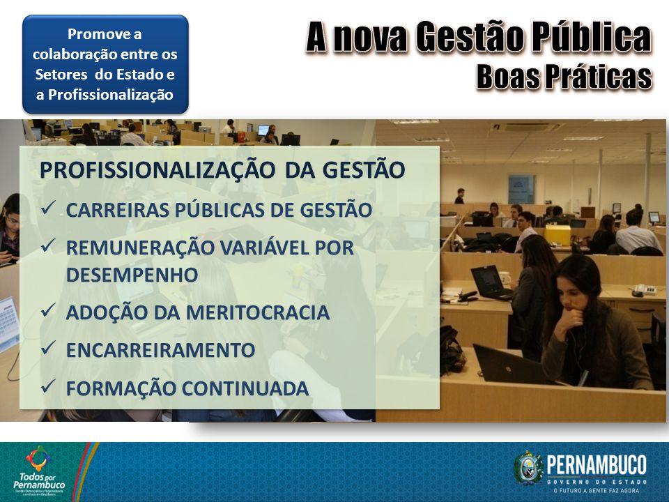PROFISSIONALIZAÇÃO DA GESTÃO CARREIRAS PÚBLICAS DE GESTÃO REMUNERAÇÃO VARIÁVEL POR DESEMPENHO ADOÇÃO DA MERITOCRACIA ENCARREIRAMENTO FORMAÇÃO CONTINUA