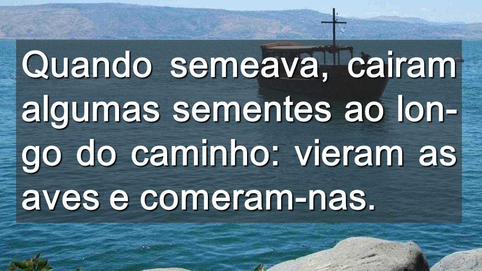 Vós, portanto, escutai o que signifi- ca a parábola do semeador: Quan- do um homem ouve a palavra do reino e não a compreende, vem o Malígno e arrebata o que foi seme- ado no seu coração.