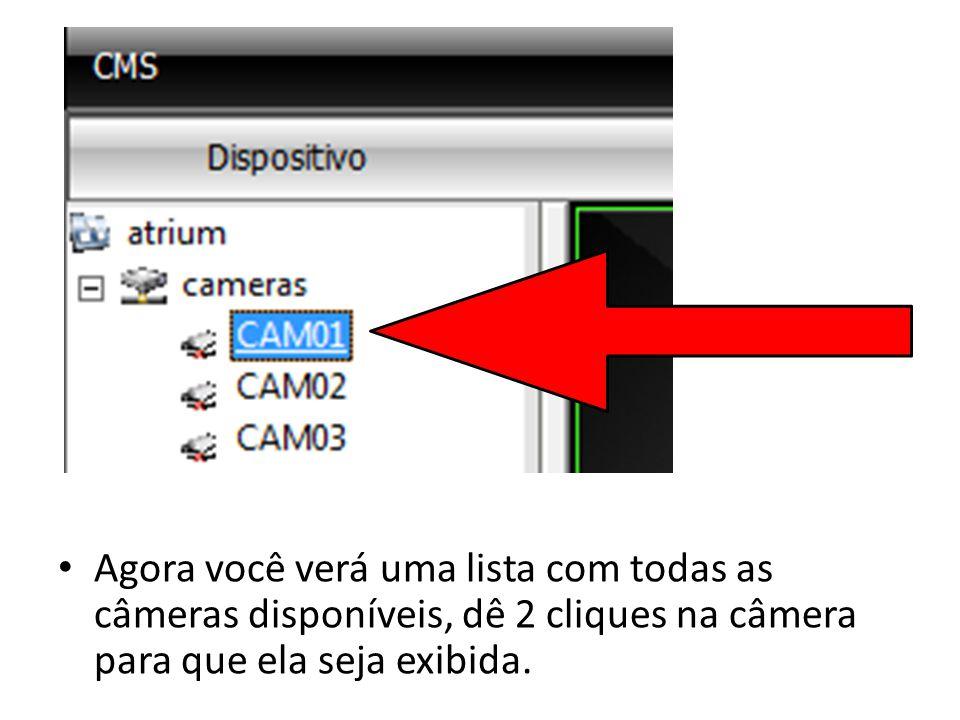 Agora você verá uma lista com todas as câmeras disponíveis, dê 2 cliques na câmera para que ela seja exibida.