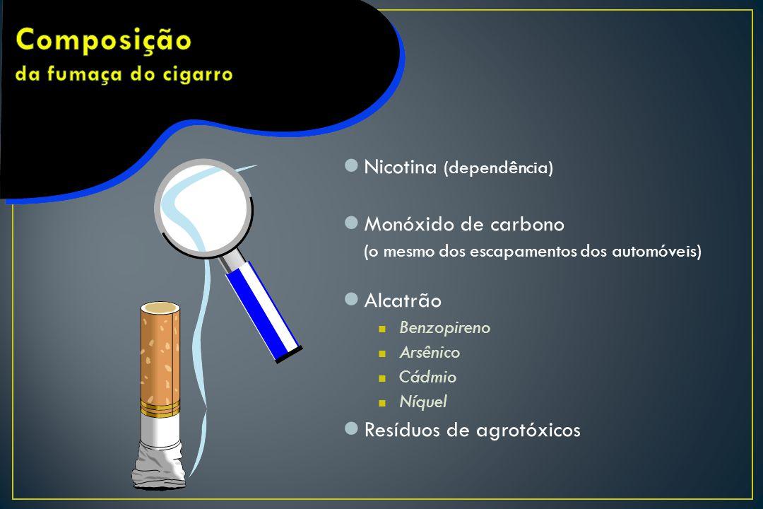 Nicotina (dependência) Monóxido de carbono (o mesmo dos escapamentos dos automóveis) Alcatrão Benzopireno Arsênico Cádmio Níquel Resíduos de agrotóxic