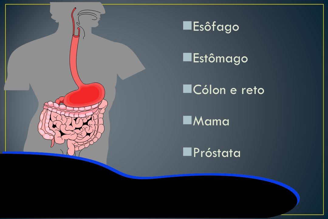 Esôfago Estômago Cólon e reto Mama Próstata